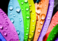 Colore e marketing: la strategia dei colori nella costruzione di una brand idendity